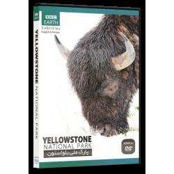 مستند YellowStone